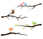 Branch with birds and owl Royalty Free Stock Images