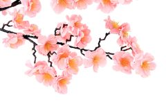 Branch of blooming artificial pink flowers. Stock Image