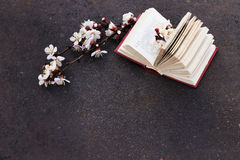 Branch of blossoming apricot with grunge  background with open book. Royalty Free Stock Photography