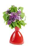 Branch of a blossoming lilac in a vase Royalty Free Stock Photo