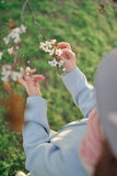 Branch of a blossoming tree and children's hands Stock Photos
