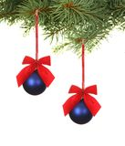 Branch with blue Christmas balls Stock Photography
