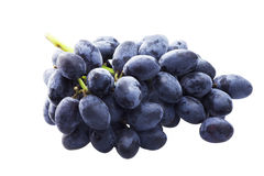 Branch of blue grapes isolated on the white backgroound Royalty Free Stock Image