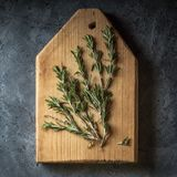Branch bunch fresh rosemary spices Royalty Free Stock Images