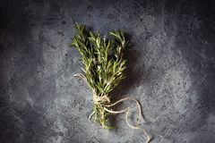 Free Branch Bunch Fresh Rosemary Spices Stock Photography - 111569422