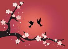 A branch of cherry blossoms with birds at sunset. royalty free illustration
