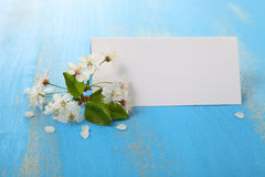 Branch of cherry blossoms and card Royalty Free Stock Photos