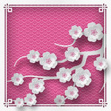 Branch of cherry blossoms. Illustration of branch of cherry blossoms on pink background with oriental vintage pattern frame for chinese new year greeting card vector illustration