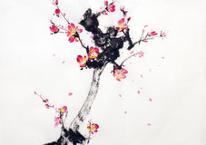 Branch of cherry blossoms Royalty Free Stock Photos