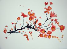Branch of cherry blossoms on a white background. The dabbing technique gives a soft focus effect due to the altered surface roughness of the paper Royalty Free Stock Image