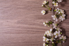 A branch of cherry blossoms on a wooden background Stock Photo