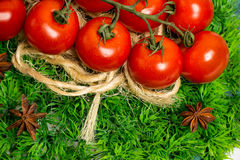Branch of cherry ripe tomatoes on green grass, anise stars Stock Photography