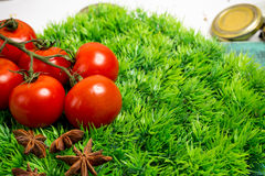 Branch of cherry ripe tomatoes on green grass, anise stars Royalty Free Stock Photos
