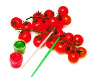 Branch Of Cherry Tomato Stock Image