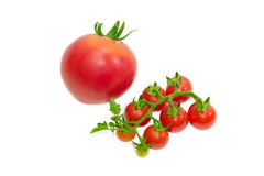 Branch of cherry tomato and one conventional tomato Stock Photography