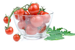Branch of cherry tomato salad bowl royalty free stock images