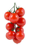 Branch of cherry tomatoes. Isolated on white background Royalty Free Stock Photo