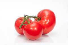 The branch of cherry tomatoes. On white Stock Photos