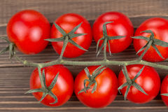 Branch of cherry tomatoes Stock Image