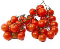 branch of cherry tomatoes, isolated on white background Stock Photography