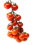 branch of cherry tomatoes, isolated on white background Stock Photo