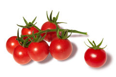 Branch of cherry tomatoes isolated on white Royalty Free Stock Photo