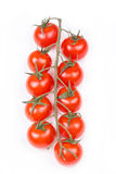 A branch of cherry tomatoes on a white background Royalty Free Stock Image
