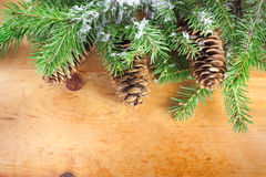 Branch of Christmas. On wooden background Stock Photos
