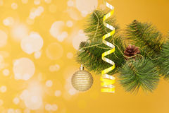 Branch of a Christmas fir-tree with ornament Royalty Free Stock Photos
