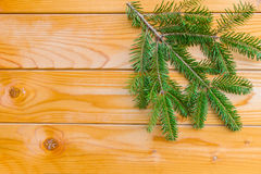 Branch of Christmas fir tree on the wooden board. To be used as background or postcard Royalty Free Stock Photography