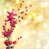 Branch of christmas stars and berries Royalty Free Stock Image
