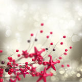 Branch of christmas stars and berries Royalty Free Stock Photo