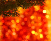 Branch of Christmas tree. Empty branch of Christmas tree on blurred background royalty free stock photo