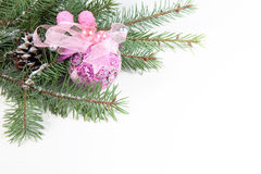 Branch of Christmas tree with ball and pinecone Royalty Free Stock Image