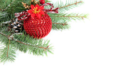 Branch of Christmas tree with ball and pinecone Stock Images