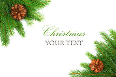 Branch of Christmas tree border. And pine cones on white background Royalty Free Stock Image