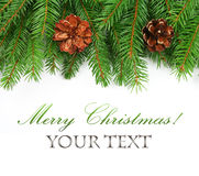 Branch of Christmas tree border. And pine cones on white background Royalty Free Stock Photography