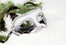 Branch of Christmas tree with box Venetian mask Stock Photo