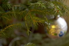 Branch of Christmas tree. With ball decoration Stock Photo