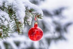 Branch christmas tree, christmas balls. And cones spruce on snow Royalty Free Stock Images