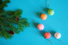 A branch of a Christmas tree, colorful balls and natural buds on a blue background. Waiting for the holiday. Merry Christmas and Happy New Year - 2019 royalty free stock photography