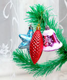 Branch of Christmas tree with colorful bauble Stock Images