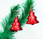Branch of Christmas tree with colorful bauble Royalty Free Stock Image