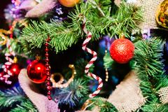 Branch of a Christmas tree with decoration royalty free stock photos