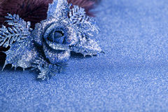 Branch of Christmas tree. With decoration rose Stock Images