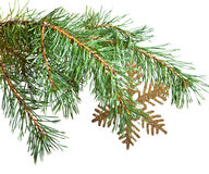 Branch of a Christmas tree and decorative snowflake Royalty Free Stock Images