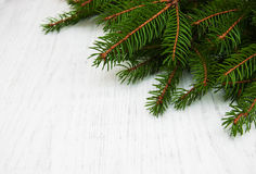 Branch of christmas tree. On a old wooden background Stock Photography