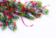 Branch of Christmas tree on white background. Art Branch of Christmas tree on white background Royalty Free Stock Photography