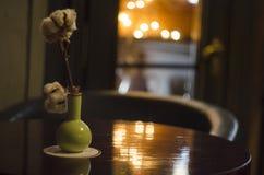 A branch of a cotton in vase at minimalistic interior. Interior stylish decor Stock Image