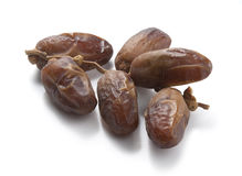 Branch of dates Stock Images
